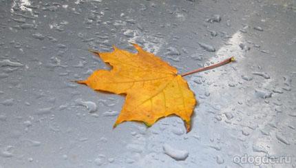 Одинокий дождь
