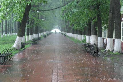 Дождь в названиях книг