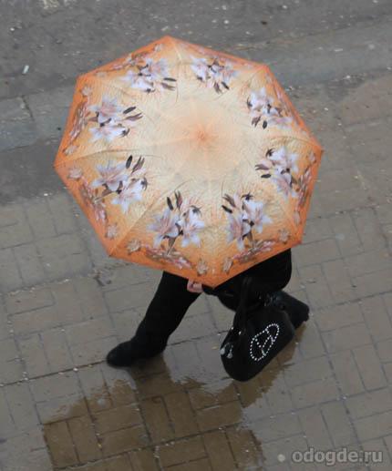 Опять дожди
