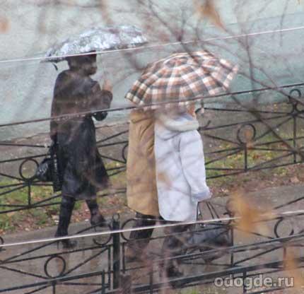 Много дождей
