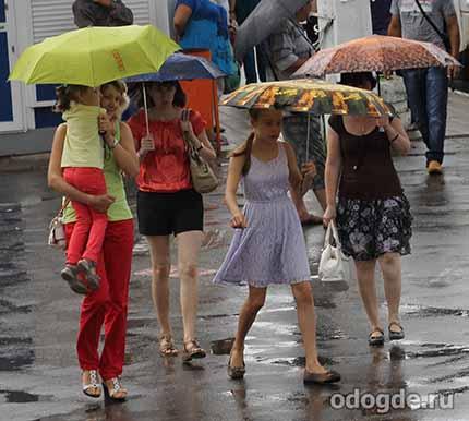 Размышления о разных видах дождя