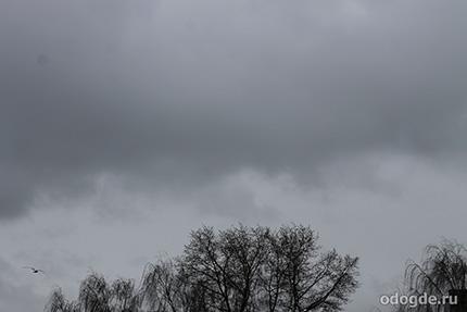 В Петербурге дождь идет из неба