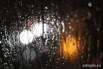 Долгожданный знак дождя