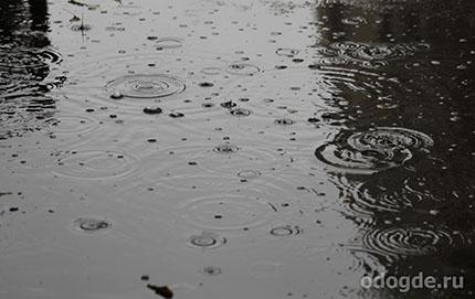 шел одинокий дождь
