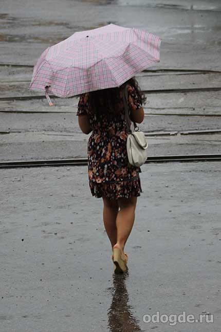 Вечерний дождь и поэт