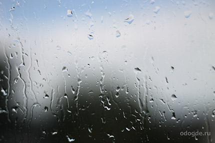 дождь в нашей жизни